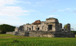 Ancient Mayan Ruins - Temple of the Descending God. Mayan Temple in Tulum, Mexico in tropcial landscape Stock Photography