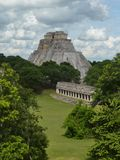 Ancient Mayan Ruins. Ancient Mayan temple set among lush jungle foliage Royalty Free Stock Image