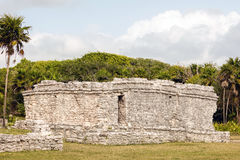 Ancient Mayan ruins in the Tulum Archaeological Zone. Remnants of the ancient Mayan building in the Tulum Archaeological Zone in Quintana Roo, Mexico royalty free stock photography