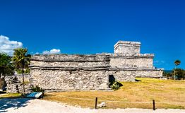 Ancient Mayan ruins at Tulum in Mexico. Ancient Mayan ruins at Tulum in the Quintana Roo State of Mexico royalty free stock photos