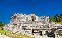 Ancient Mayan ruins at Tulum in Mexico. Ancient Mayan ruins at Tulum in the Quintana Roo State of Mexico stock images