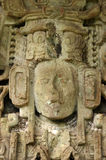 Ancient Mayan sculpture. In Copan, Honduras royalty free stock images