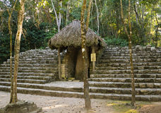 Ancient mayan temple lost in forest, Mexico. Ancient ruined mayan temple with a quantity stairs Royalty Free Stock Photography