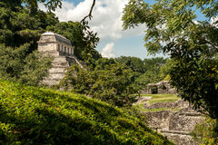 The Ancient Mayan Temple in Palenque Stock Photo