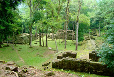Ancient mayan temple ruins in honduras Royalty Free Stock Photo