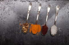 Ancient melchior spoons with spices on metal surface for backgro. Und Stock Photography