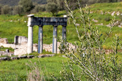 Ancient Messene at Greece Royalty Free Stock Photos