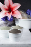 Ancient minerals - luxury face and body spa treatment, clay powd Stock Photos
