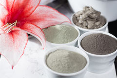 Ancient minerals - luxury face and body spa treatment, clay powder and mask. Green, blue and black clay royalty free stock photos