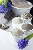 Ancient minerals - luxury face and body spa treatment, clay powd Stock Photography