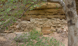 An ancient mogollon cliff dwelling in the gila wilderness Stock Photos