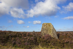 Ancient monolith in heather Royalty Free Stock Images