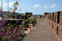 Ancient moorish castle in Silves Stock Images