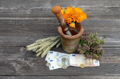 Ancient mortar and medical herbs with euro money banknote Stock Photography