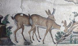 Ancient Mosaic Stock Photos