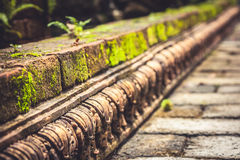 Ancient mossy border pavement with perspective and vanishing point as ancient background in vintage style. Ancient mossy carving border pavement with perspective Stock Photography