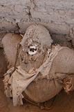 Ancient Mummy Wrapped in Fabric Stock Photography