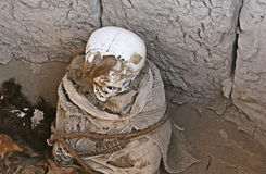 Ancient Mummy Wrapped in Fabric Stock Photos
