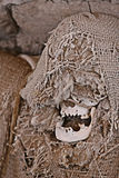Ancient Mummy Wrapped in Fabric Stock Photo