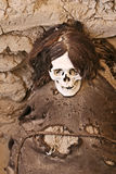 Ancient Mummy Wrapped in Fabric Stock Image