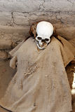 Ancient Mummy Wrapped in Fabric Royalty Free Stock Photo