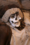 Ancient Mummy Wrapped in Fabric. This pre-incan mummy is preserved by the dry desert air with hair intact. Skulls and bones in Chauchilla, an ancient cemetery in Stock Image