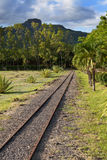 The ancient narrow gage railwayin tropical park, Mauritius Royalty Free Stock Photo