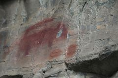 Native American ancient Rock Art mountain lion royalty free stock photos