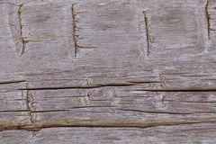 Notched nineteenth century cabin wood background Stock Images