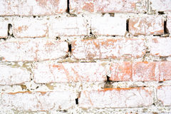 Ancient old brick white wall with moss. Brick Texture of old wall Royalty Free Stock Photos