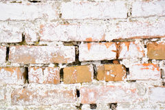 Ancient old brick white wall with moss. Brick Texture of old wall Royalty Free Stock Image
