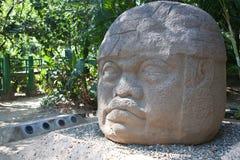 Ancient olmec head, La Venta royalty free stock images