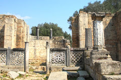 Ancient Olympia Royalty Free Stock Images