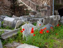 Ancient open-air Theatre of Marcellus in Rome. Italy Royalty Free Stock Image