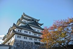 Ancient Osaka castle and maple trees in Autumn Kansai Japan. Ancient Osaka castle and maple trees in Autumn in Kansai region in Japan stock images