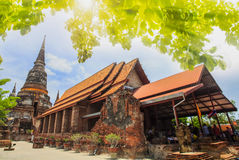Ancient Pagoda in Ayuthaya historical park. With sun effect in Thailand Royalty Free Stock Photos