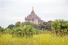 Ancient pagoda in burmese landscape in Bagan Stock Photo