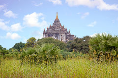 Ancient pagoda in the landscape from Bagan in Myanmar Royalty Free Stock Images
