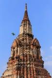 Ancient pagoda. At Wat Phra that,Ayutthaya, Thailand Royalty Free Stock Photography