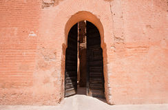 Ancient palace doors Stock Images