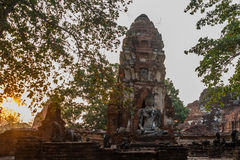 Ancient palaces on the background at sunset. Ayutthaya Thailand. Royalty Free Stock Images