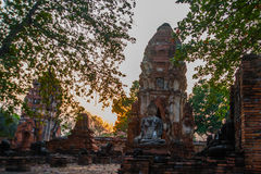 Ancient palaces on the background at sunset. Ayutthaya Thailand. Royalty Free Stock Photography