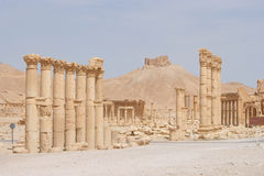 Ancient Palmyra, Syria Royalty Free Stock Photo