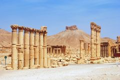 Ancient Palmyra, Syria Stock Image