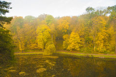 Ancient park lake in autumn. Covered with leaves Royalty Free Stock Photos