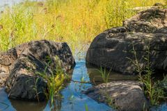Ancient Petroglyph is located in the Sikhote-Alin , Khabarovsk, Russia Royalty Free Stock Photos