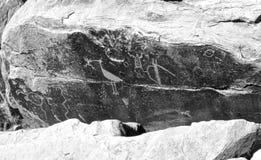 Petroglyphs. Ancient Petroglyphs carved in Arizona rock royalty free stock photo