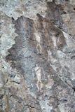 Ancient petroglyphs of dancing shamans Stock Photo