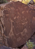 Ancient petroglyphs - Namibia Royalty Free Stock Image