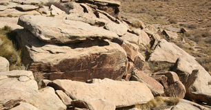 Ancient petroglyphs in Petrified Forest Royalty Free Stock Images